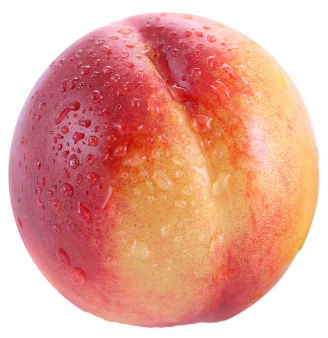 Big nectarine. Png clipart best web