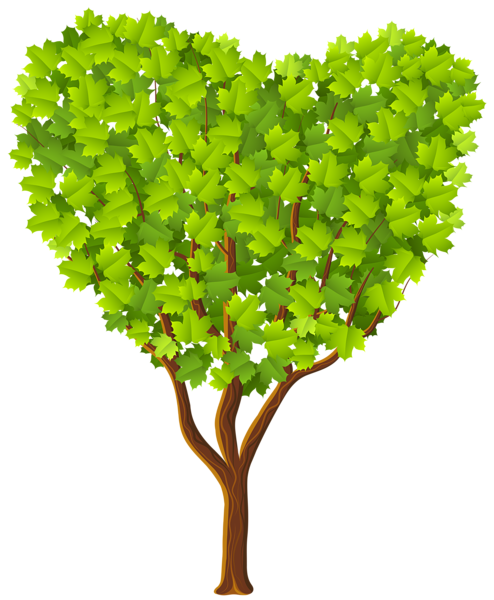 Heart tree png. Green transparent image gallery