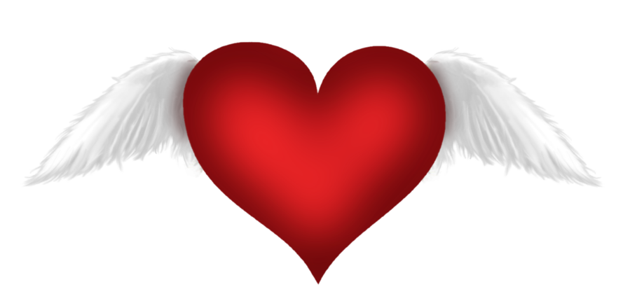 Heart with wings png. Red transparent clipart gallery