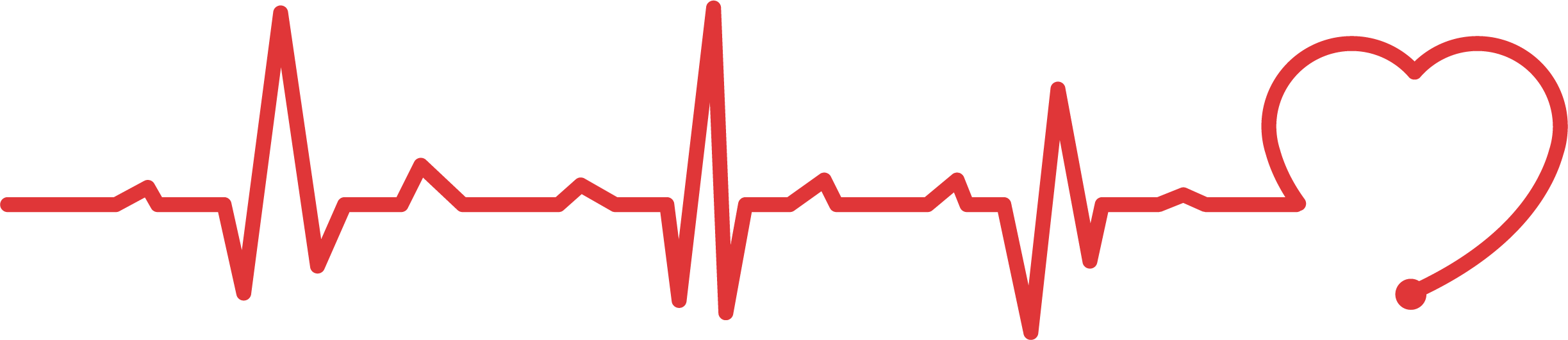 Heartbeat line png. Heart rate electrocardiography pulse