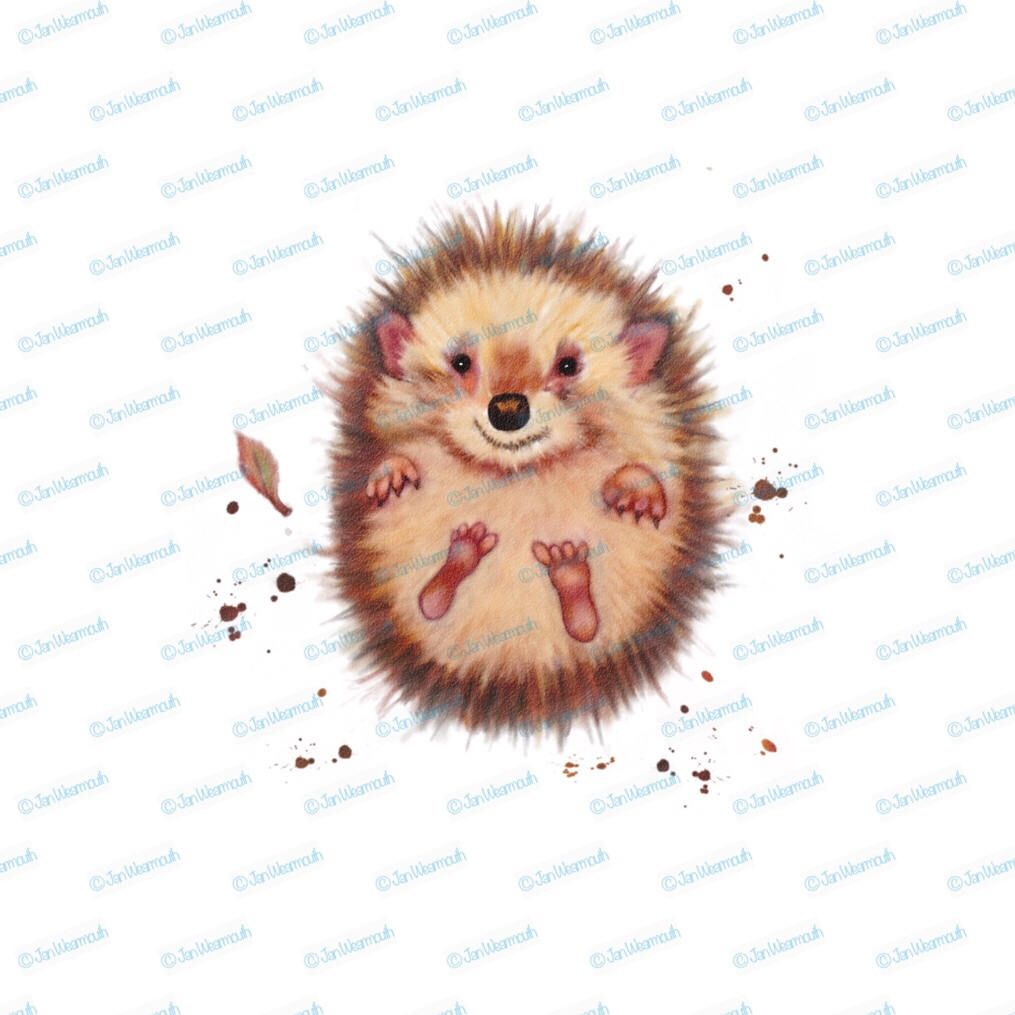 Hedgehog clipart baby hedgehog. Animal printable art digital