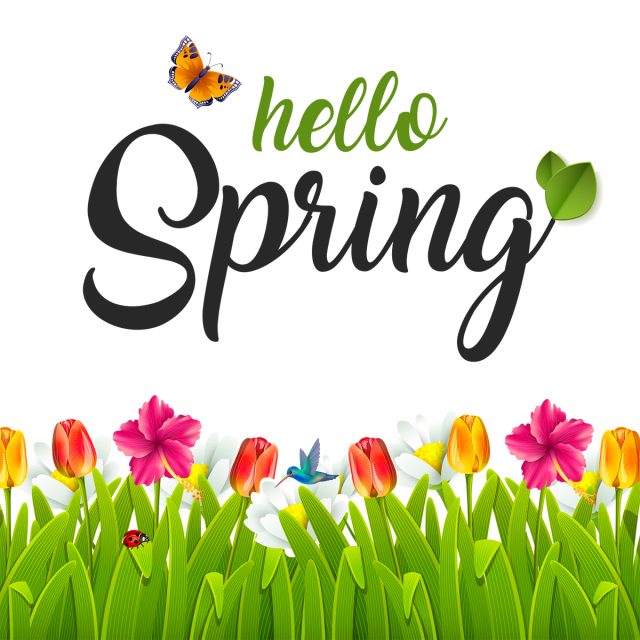Hello spring png. Beautiful green and psd