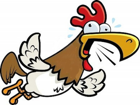 Hen clipart short animal. Stories mom and her
