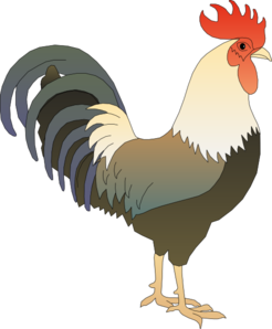 Hen vector fish. Clipart rooster cute borders