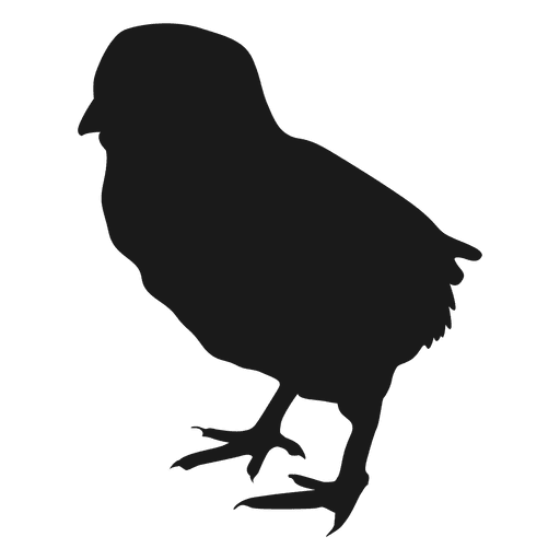 Hen vector silhouette. Small chicken transparent png
