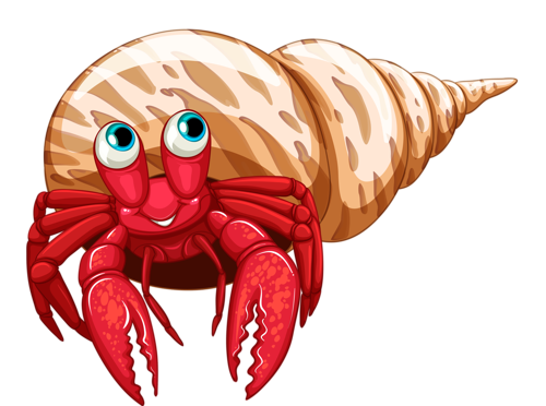 pinterest clip art. Hermit crab png clip art free library
