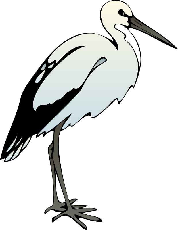 Heron vector animated. Green clipart free on