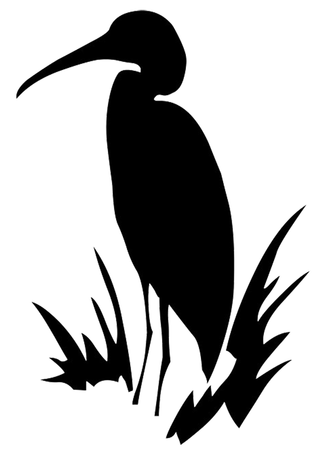Heron vector transparent. Download free png images