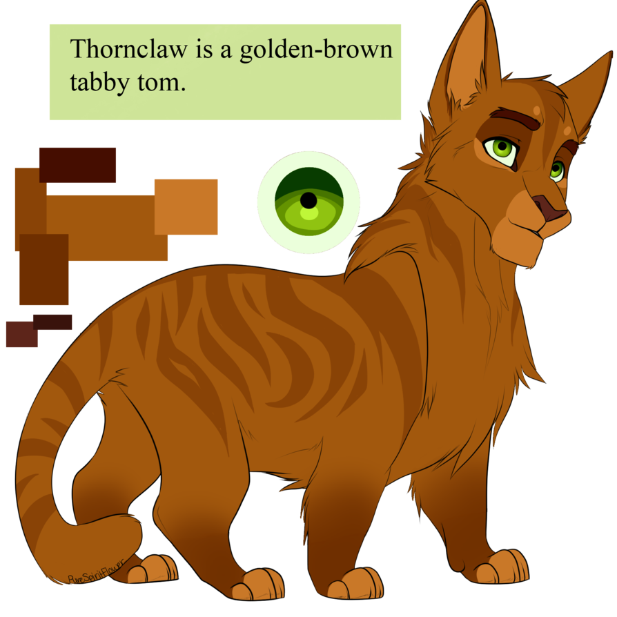 Thornclaw by purespiritflower deviantart. Hetalia clip cat image black and white library