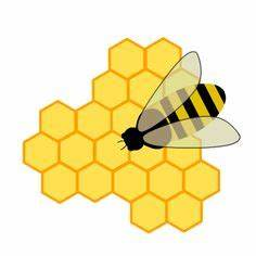 hexagon clipart beehive