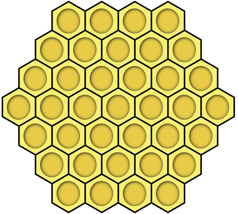Hexagon drawing bee. Honeycomb honey beehive free