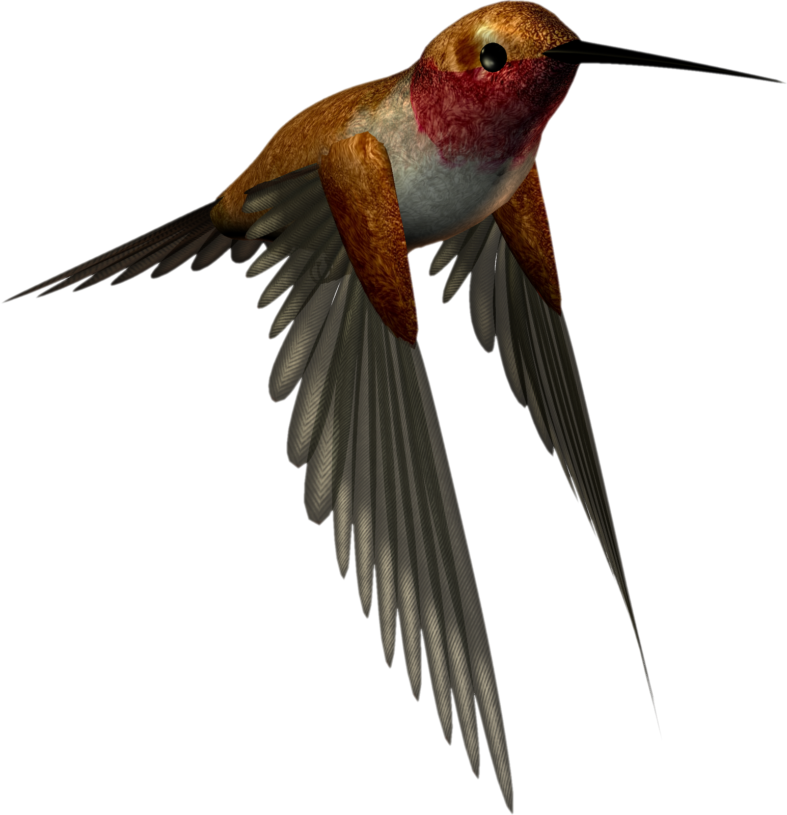Hummingbird clipart rufous hummingbird. Free high resolution download