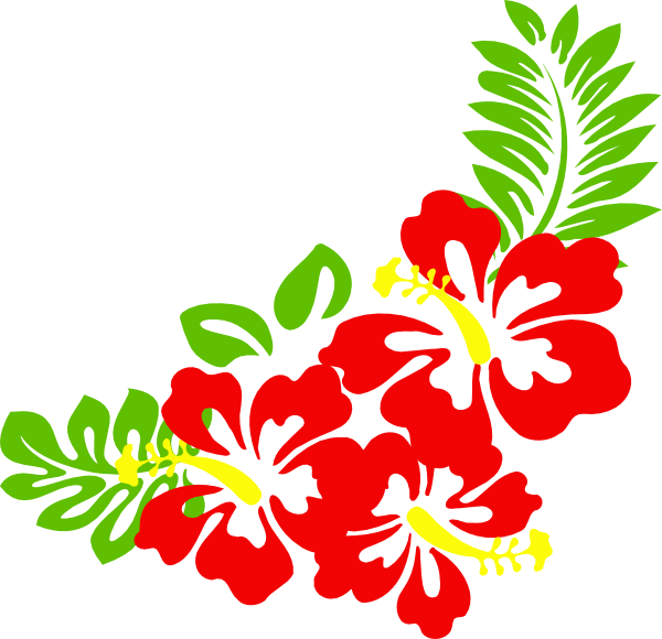 Hibiscus border png. Collection of flower
