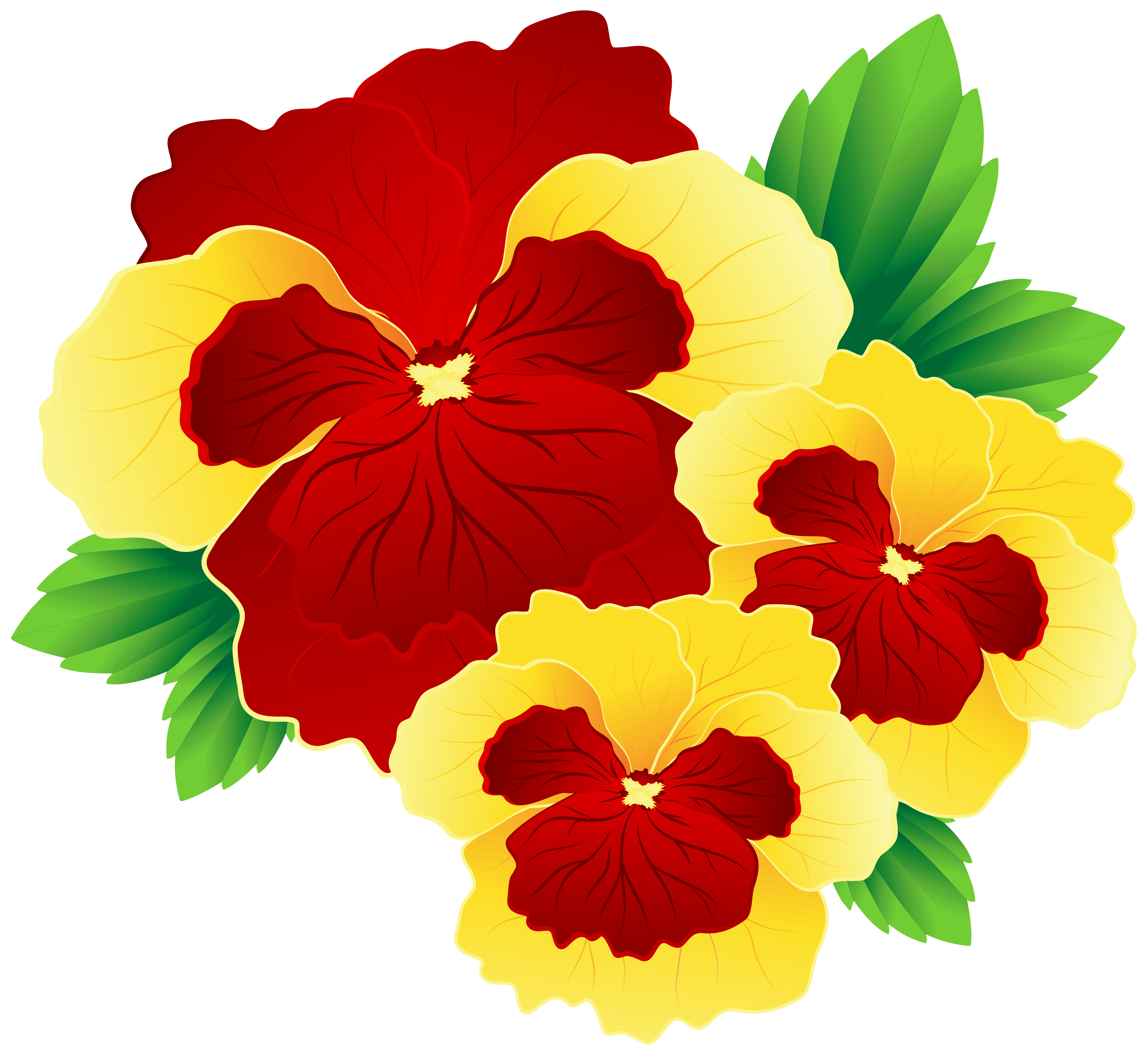 Hibiscus bouquet png. Red and yellow pansies