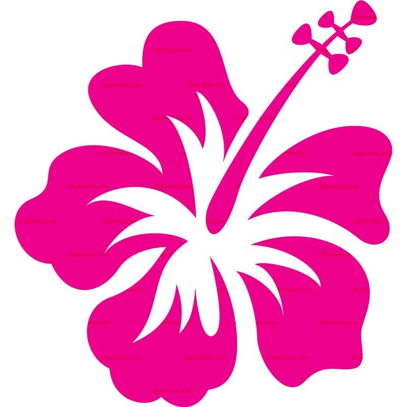 Hibiscus clipart. Royalty free vector design