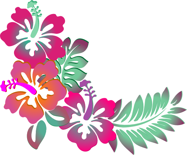 Colorful floral corner borders. Hawaiian flower border png png library