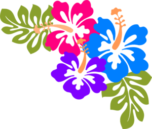 Hibiscus clipart colour corner border. Example of design made