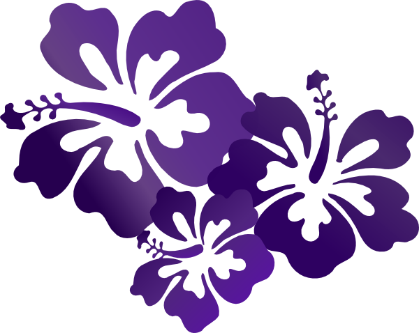 Hibiscus png vector. Flowers clip art at