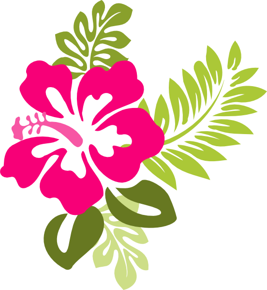 pink hibiscus border png