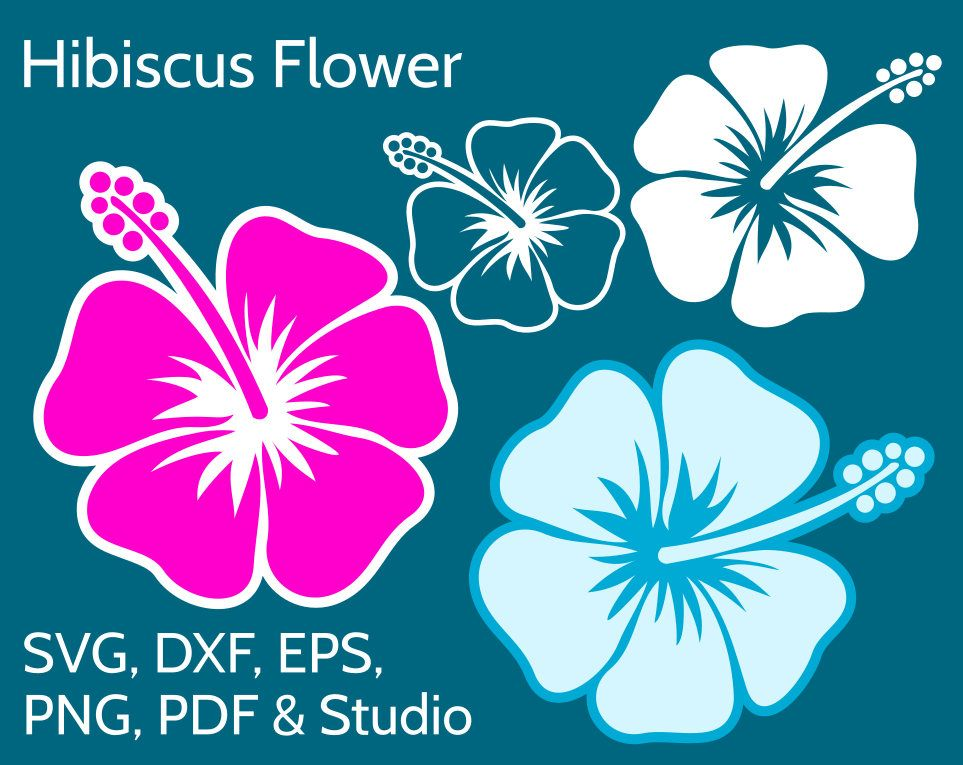 Hibiscus clipart tanning salon. Svg flower file for