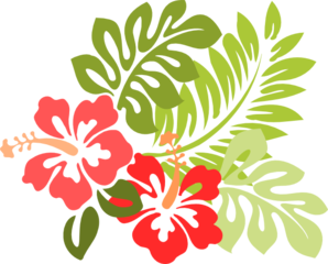 hibiscus clipart png