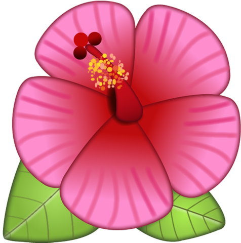 Hibiscus emoji png. Collection of flower
