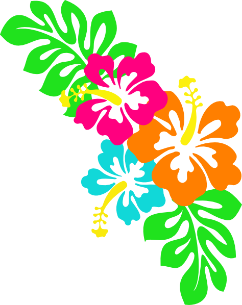 Hibiscus flower png border. Clip art at clker