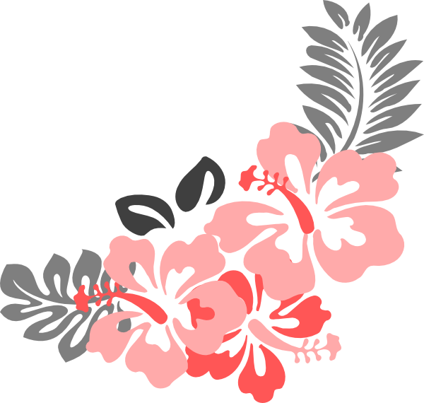 Hibiscus flower png border. Coral grey clip art