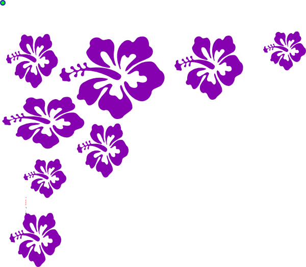 Hibiscus flower png border. Color clip art at