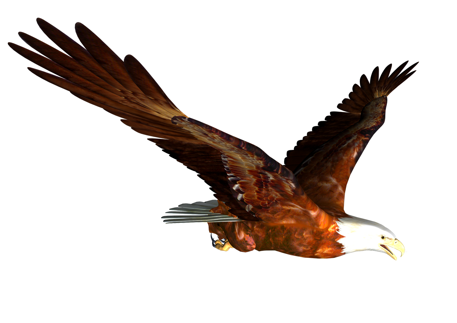 High resolution png images free download. Eagles six isolated stock