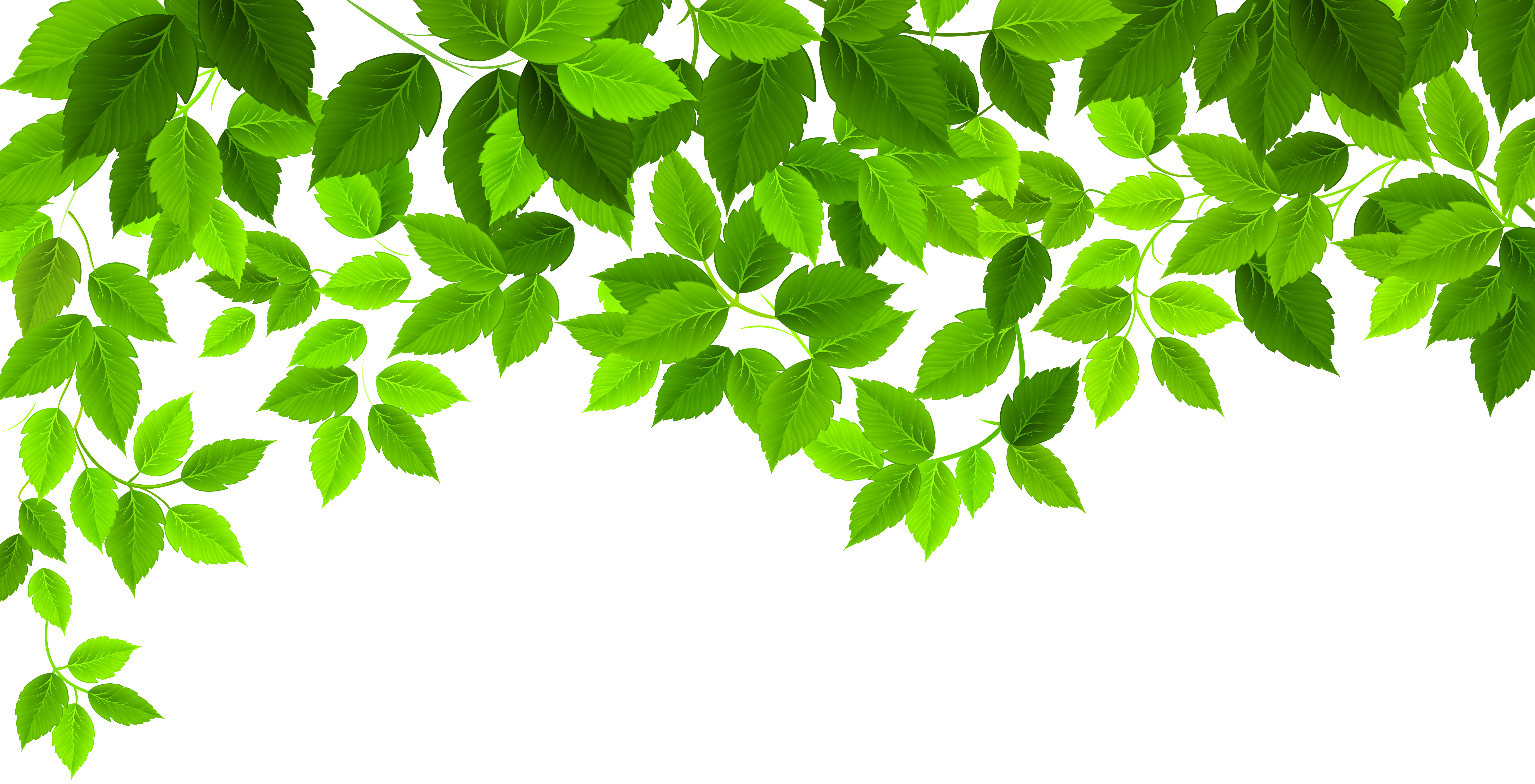 High resolution png images free download. Spring leaves decoration clip
