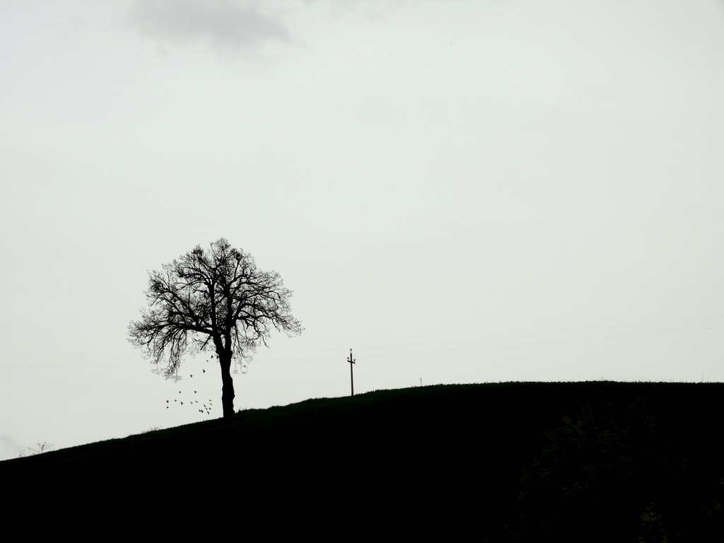 Hill clipart silhouette. File jpg wikimedia commons