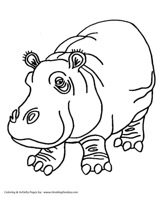 Hippo clipart coloring. Drawing for kids at
