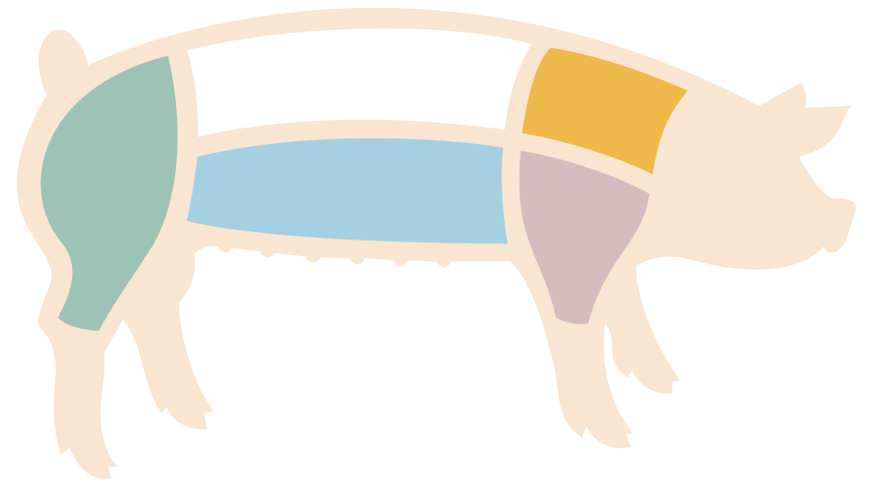 Pigs clipart overweight. Typical market pig today