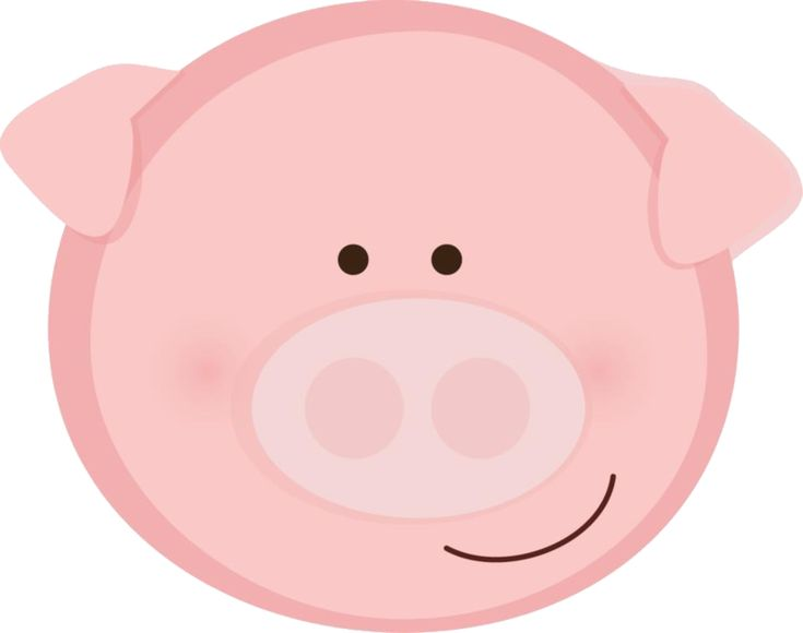 Hog clipart domestic animal. Best maiali images