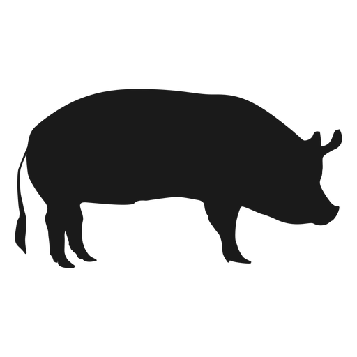 Pork drawing side view. Pig face silhouette at