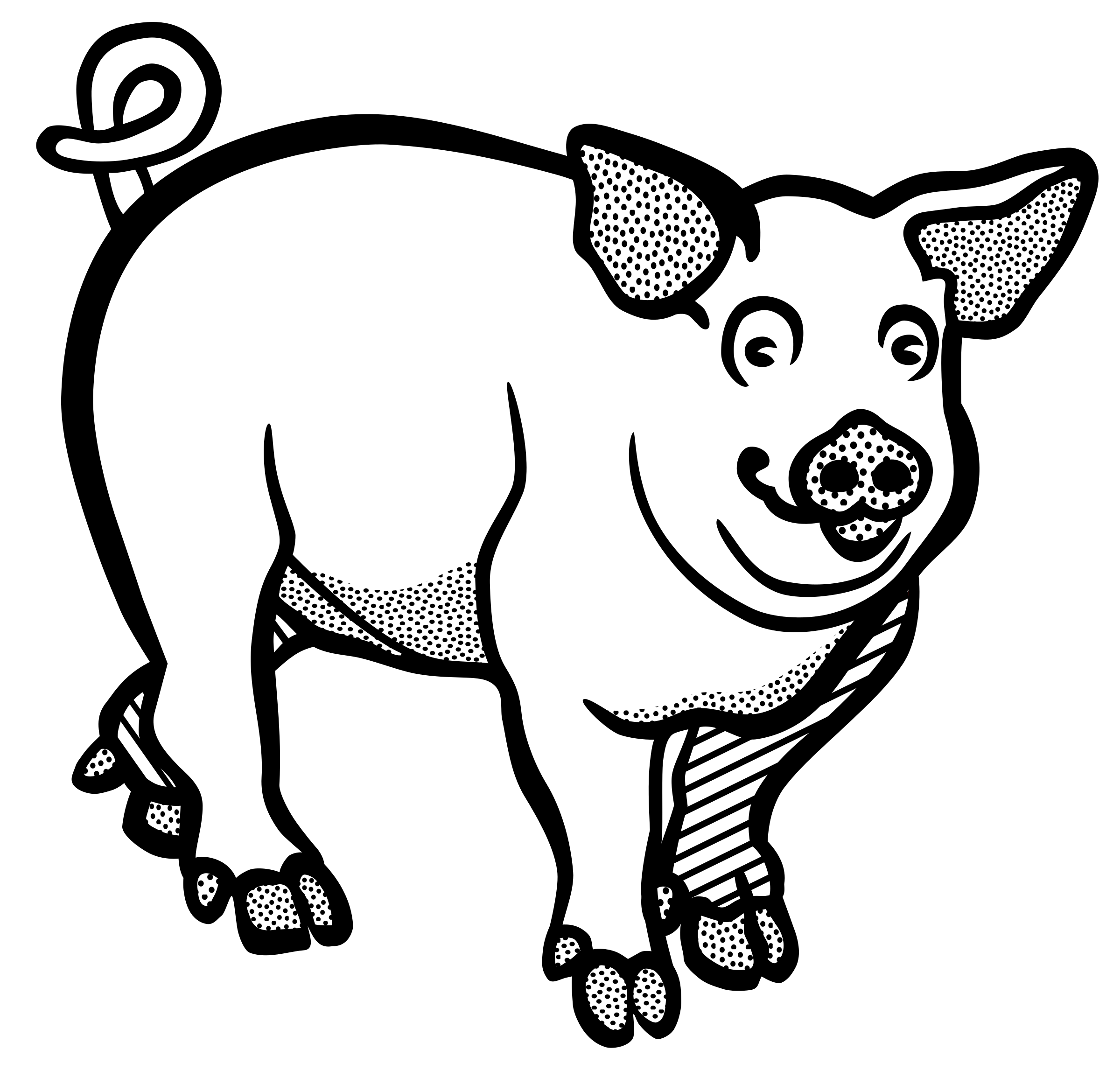 Hog vector skull. Clipart pig huge
