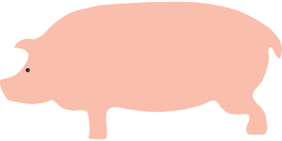 Ox vector side view. Pig free group with