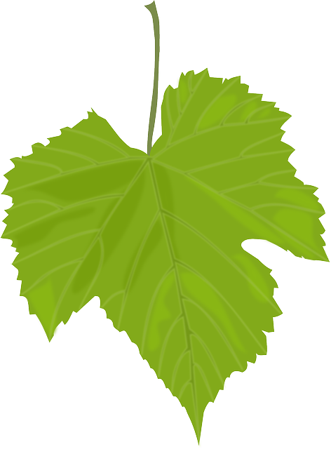 Hoja vector leaf. Free image on pixabay png black and white stock
