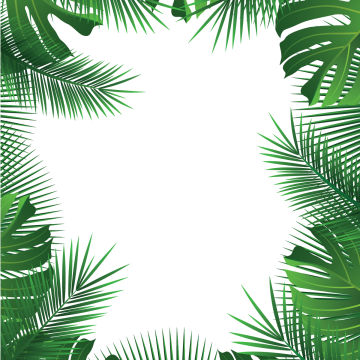 Vector nature forest border. Summer leaves beach tropicalart