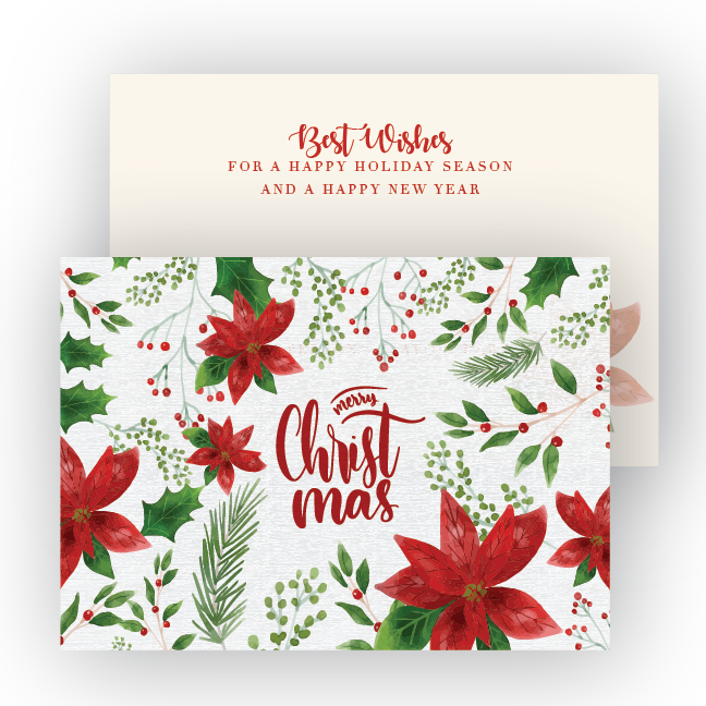 Holiday card png. Poinsettia for the holidays
