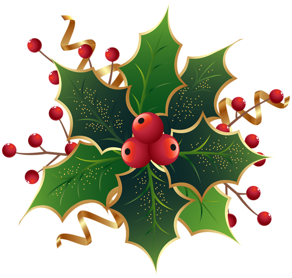 Holly and ivy png. Christmas mistletoe clip art