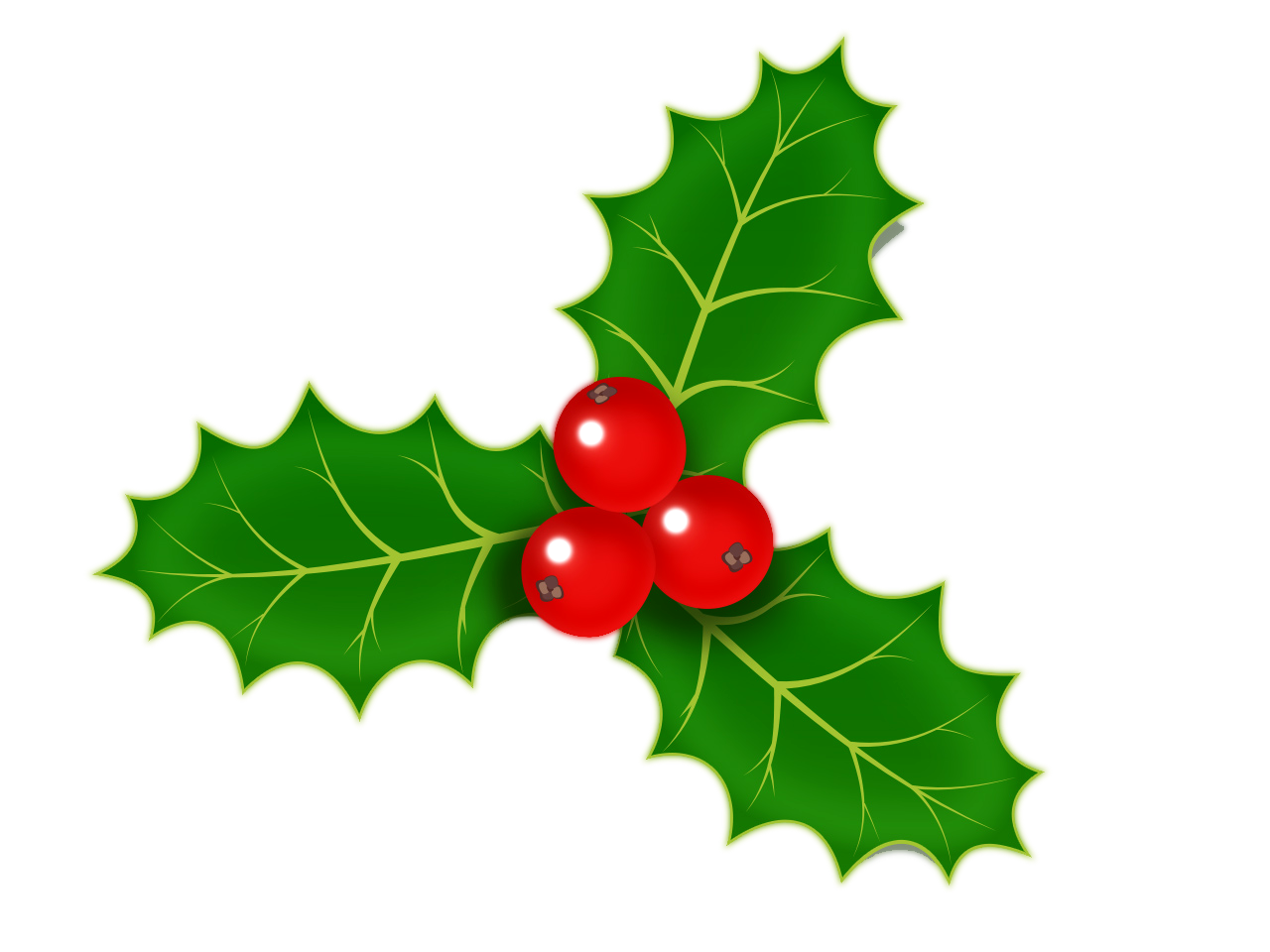 Holly berries png. Christmas images free download