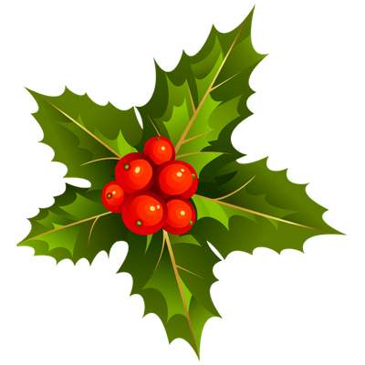 Holly branch png. Happy new year transparent