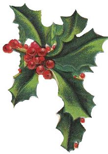 Holly clipart holly plant. Free christmas vintage