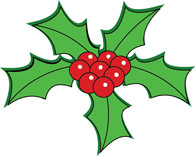 Holly clipart holly plant. Search results for christmas