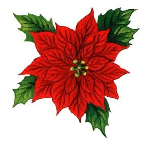 Holly clipart holly plant. Free christmas clip art