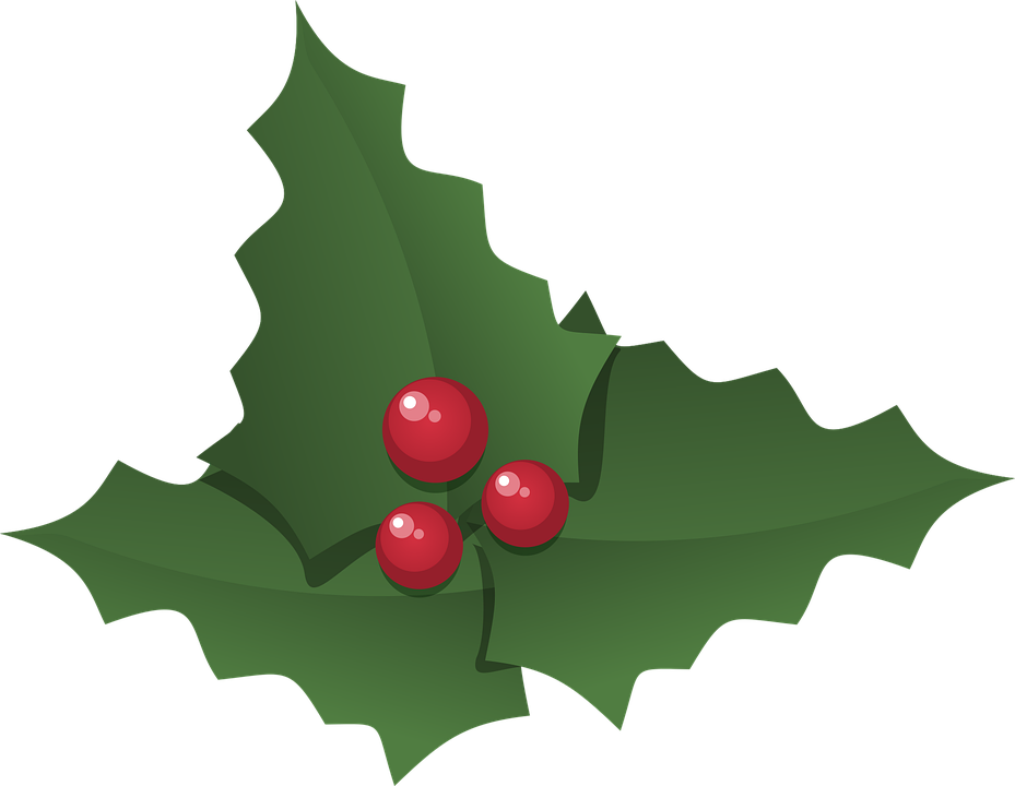Christmas Leaf Png.Holly Leaf Transparent Png Clipart Free Download Ywd