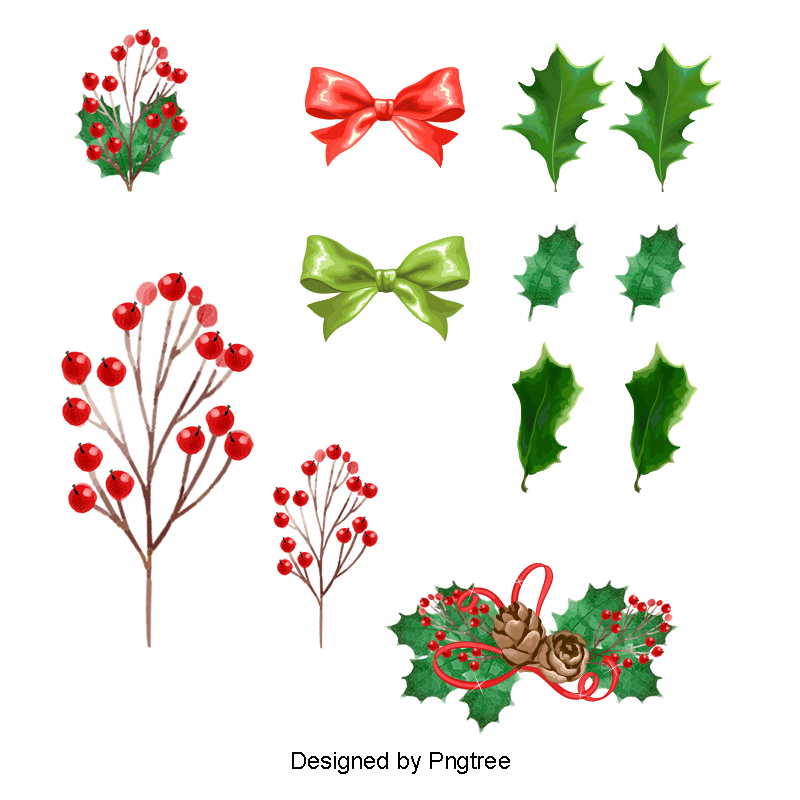Holly leaf png. Various styles vector christmas