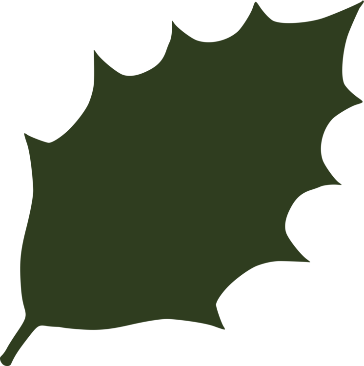 Holly leaf png. Download maple computer icons